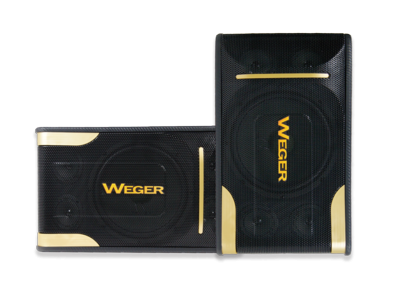 WEGER WG-503K